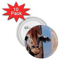 Cute Giraffe 1 75  Button (10 Pack)