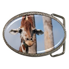 Cute Giraffe Belt Buckle (Oval)