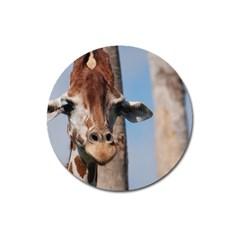 Cute Giraffe Magnet 3  (Round)