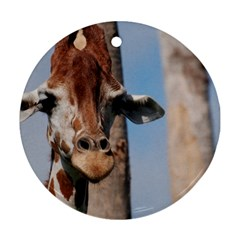 Cute Giraffe Round Ornament (two Sides)