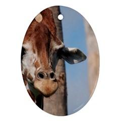 Cute Giraffe Oval Ornament (Two Sides)