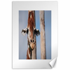 Cute Giraffe Canvas 24  x 36  (Unframed)