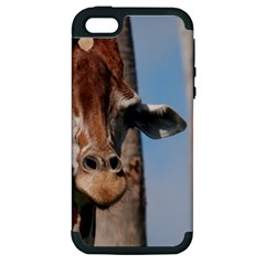 Cute Giraffe Apple Iphone 5 Hardshell Case (pc+silicone)