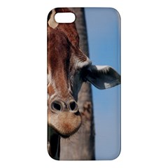 Cute Giraffe Apple iPhone 5 Premium Hardshell Case