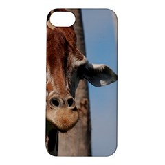 Cute Giraffe Apple Iphone 5s Hardshell Case