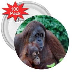 Orangutan Family 3  Button (100 pack)