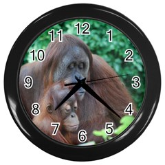 Orangutan Family Wall Clock (Black)