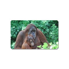 Orangutan Family Magnet (Name Card)