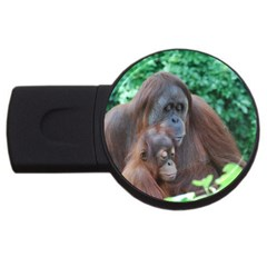 Orangutan Family 2gb Usb Flash Drive (round)