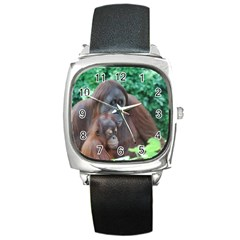 Orangutan Family Square Leather Watch