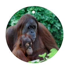Orangutan Family Round Ornament (Two Sides)