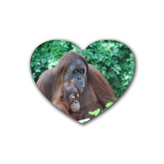 Orangutan Family Drink Coasters (heart)