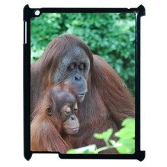 Orangutan Family Apple iPad 2 Case (Black)