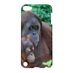 Orangutan Family Apple iPod Touch 5 Hardshell Case