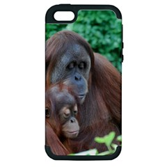 Orangutan Family Apple Iphone 5 Hardshell Case (pc+silicone)
