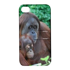 Orangutan Family Apple Iphone 4/4s Hardshell Case With Stand