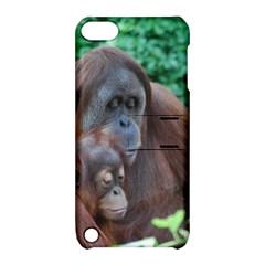 Orangutan Family Apple iPod Touch 5 Hardshell Case with Stand