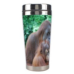 Orangutan Family Stainless Steel Travel Tumbler