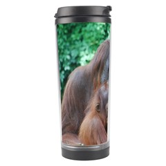 Orangutan Family Travel Tumbler