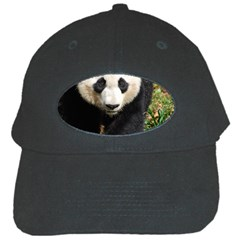 Giant Panda Black Baseball Cap