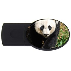 Giant Panda 1GB USB Flash Drive (Oval)