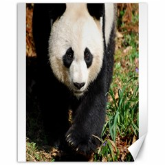 Giant Panda Canvas 16  X 20  (unframed)