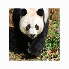 Giant Panda Canvas 18  x 24  (Unframed)