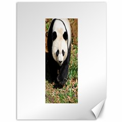 Giant Panda Canvas 36  x 48  (Unframed)
