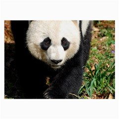 Giant Panda Glasses Cloth (Large, Two Sided)
