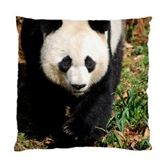 Giant Panda Cushion Case (Single Sided)