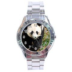 Giant Panda Stainless Steel Watch