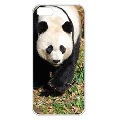 Giant Panda Apple Iphone 5 Seamless Case (white)