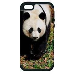 Giant Panda Apple Iphone 5 Hardshell Case (pc+silicone)