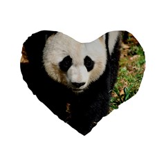 Giant Panda 16  Premium Heart Shape Cushion