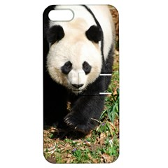 Giant Panda Apple Iphone 5 Hardshell Case With Stand