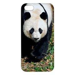Giant Panda Apple Iphone 5 Premium Hardshell Case