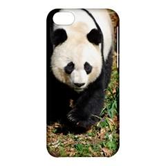 Giant Panda Apple iPhone 5C Hardshell Case