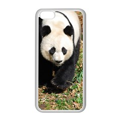 Giant Panda Apple iPhone 5C Seamless Case (White)