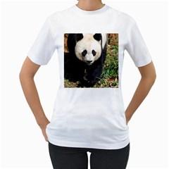 Giant Panda Women s T-Shirt (White)