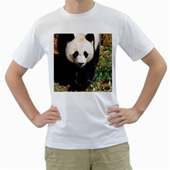 Giant Panda Men s T-Shirt (White)