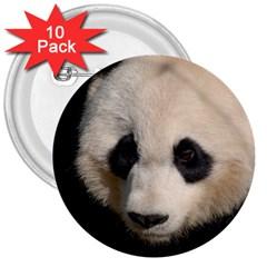 Adorable Panda 3  Button (10 pack)