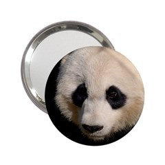 Adorable Panda Handbag Mirror (2.25 )