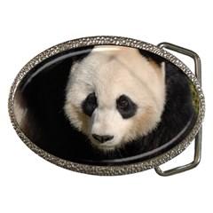 Adorable Panda Belt Buckle (Oval)