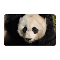 Adorable Panda Magnet (Rectangular)