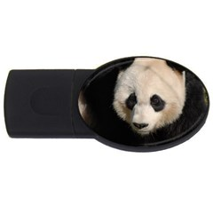 Adorable Panda 2GB USB Flash Drive (Oval)