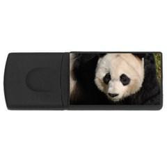 Adorable Panda 1GB USB Flash Drive (Rectangle)