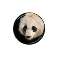 Adorable Panda Golf Ball Marker 4 Pack (for Hat Clip)