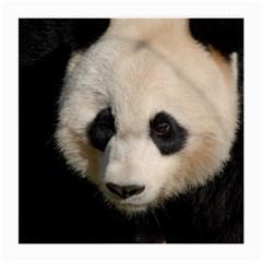 Adorable Panda Glasses Cloth (medium, Two Sided)