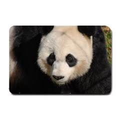 Adorable Panda Small Door Mat