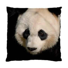 Adorable Panda Cushion Case (Single Sided)